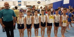 Öt Eötvös érem a Torna Diákolimpia Országos Döntőjében