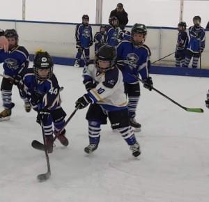 A jégkorong bajnokai